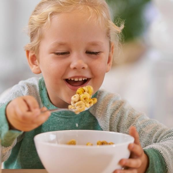 How Is Cereal Made? Nutritious Cereal Breakfast Extrusion Process Principle