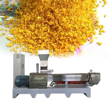 LargeCapacity500kg/hFortifiedRiceKernels(Frk)ExtruderMachine